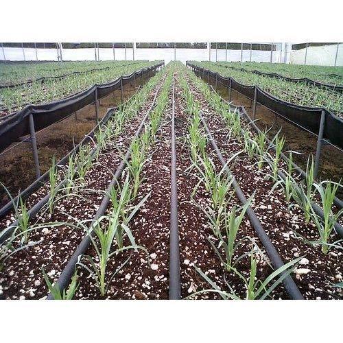 drip-irrigation-jpg-500x500